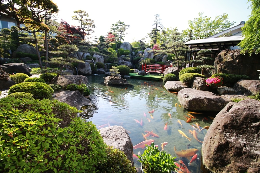 Etonnant Water Garden Have The Magical Ability To Turn An Ordinary Space Into A  Wonderland Filled With Dramatic Waterfalls, Serene Koi Ponds Or Decorative  Fountains.