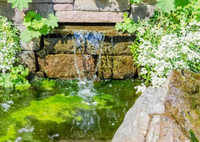 Atlanta Water Garden 13