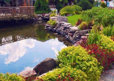 Atlanta Water Garden 16