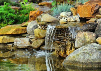 Atlanta Water Garden 2