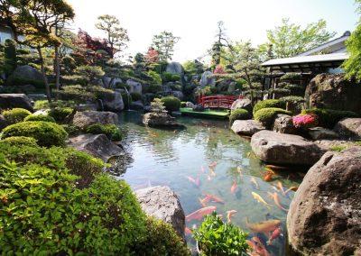 Atlanta Water Garden 20
