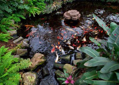 Atlanta Water Garden 21