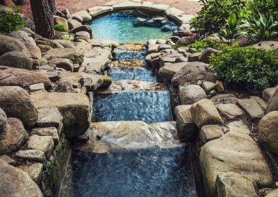Atlanta Water Garden 23