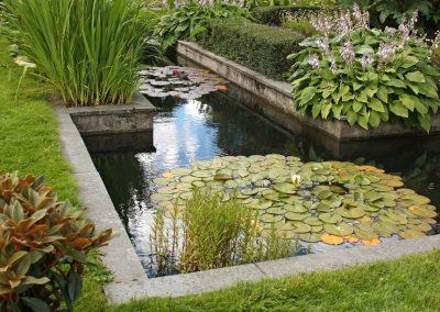 Atlanta Water Garden 27