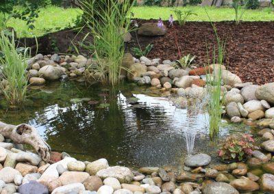 Atlanta Water Garden 28
