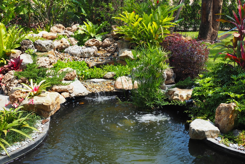 Atlanta Water Garden 29