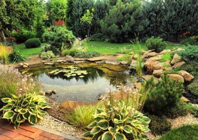 Atlanta Water Garden 46