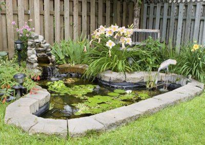 Atlanta Water Garden 5