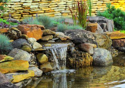 Atlanta Water Garden 8